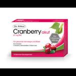 Dr. Böhm Cranberry akut Brausegranulat 10St